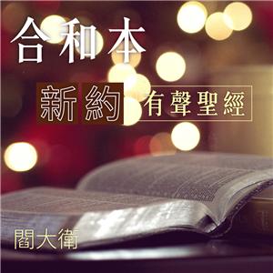 有聲聖經-合和本-新約