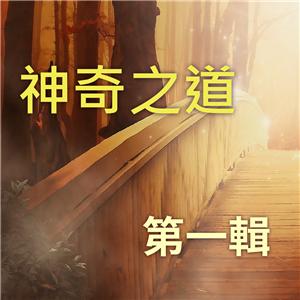 神奇之道 第1輯